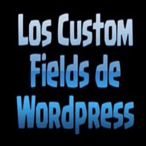 Los Custom Fields en WordPress ¿Qué son?¿Cómo y para qué se usan?