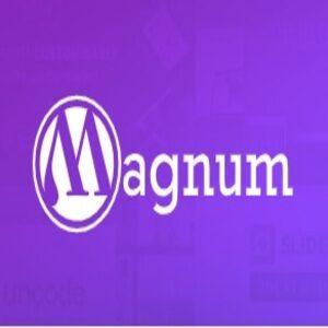 Miles de Plugins y Temas de WPmagnum